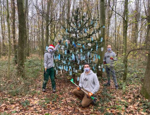 Die KRAKE dekoriert Kölns hässlichsten Weihnachtsbaum